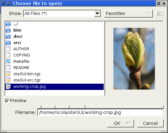 Dialog window for file opening with embedded preview